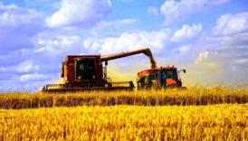 Вітаємо з Днем працівників сільського господарства!